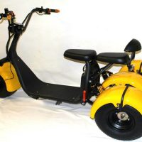 Brand New 3000W Harley Citycoco tricycle